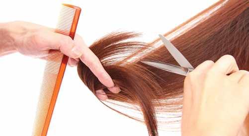 секущиеся кончики волос: фото